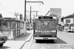 aphv-1478-15307--22-7-1982-marseille-bus-736-lijn-68-remise-st-pierre--02
