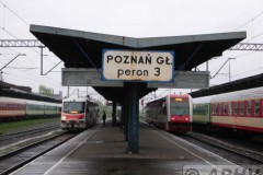 aphv-1793-dscn2460-29-april-2006-poznan-glowy