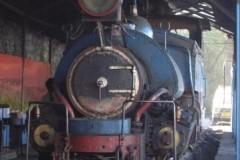 aphv-1829-dscn2036-16-12-2005-darjeeling-loco-shed