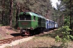aphv-282-antonovka-ty2-088-forest-km-85---0000--31-5-2004