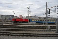aphv-3843-dscn8341
