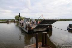 aphv-4054--dsc8940-20110825-3692-reedham-chain-ferry-aphv