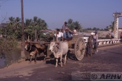 aphv-1202-030220-myanmar-waw-ossenkar-20-2-2003