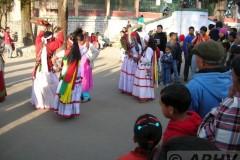 aphv-1306-dscn2049-16-12-2005-darjeeling