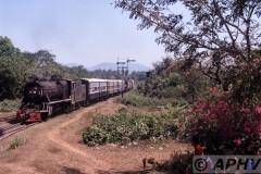 aphv-138-myanmar-rly-yd962-hninpale--flowers-19-2-2003