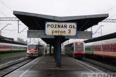 aphv-1793-dscn2460-29-april-2006-poznan-glowy