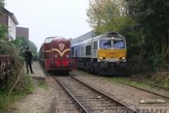 aphv-2185-dscn3510-eerbeek-15-10-2006-aphv
