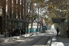 aphv-2756-dscn0912-atm-04-t4-wellington-stop-barcelona-17-11-2008-aphv