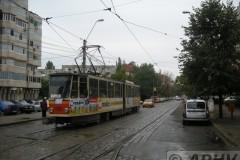 aphv-3155-dscn7950