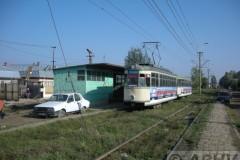 aphv-3162-dscn8039-braila-castanului