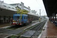 aphv-3233-dscn7921