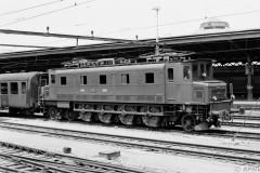 aphv-3309-01288-buchs-ch-1977