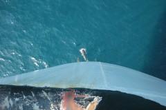 aphv-3460-dscn7611-dolfijnen-voor-geroite-1-10-2007-aphv