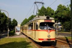 aphv-3861--dsc5826-20110430-1103