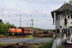 aphv-3892--dsc6279-20110513-1330-rf-rheinkamp-rhb641